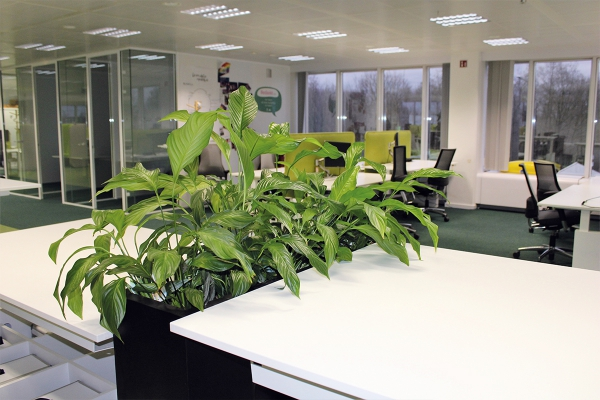 kantooropdigipolisite4.jpg